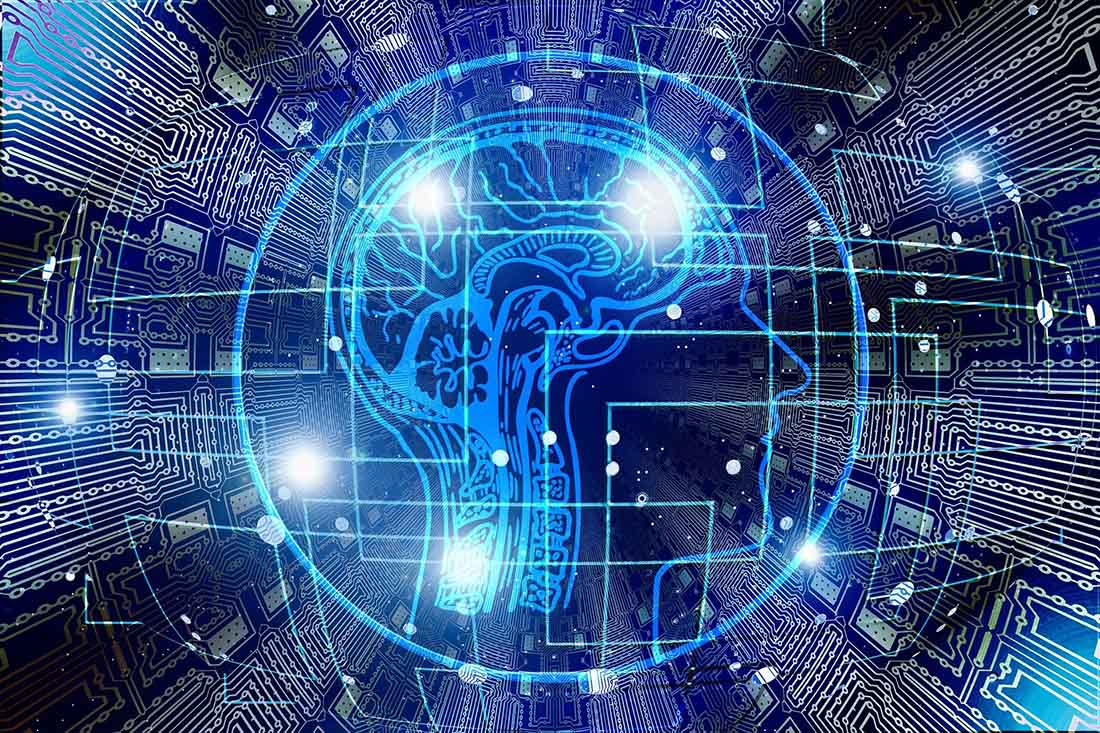 illustrazione di un cervello umano